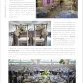 Chicago Style Weddings 1